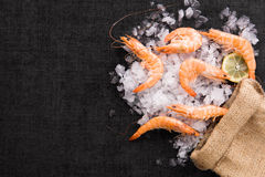 Fresh shrimp on ice on burlap bag. Royalty Free Stock Images