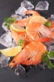 Fresh shrimp on ice Royalty Free Stock Photo