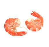 Fresh shrimp isolated on a white background Royalty Free Stock Photos