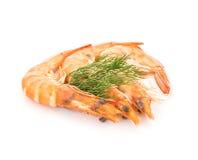 Fresh  shrimp  isolated  on a white background Stock Photos
