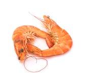 Fresh  shrimp  isolated  on a white background Royalty Free Stock Image