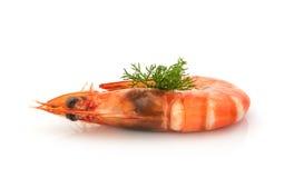 Fresh  shrimp  isolated on a white background Royalty Free Stock Photo
