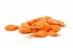 Fresh shrimp isolated Royalty Free Stock Images