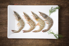 Fresh shrimp Royalty Free Stock Images