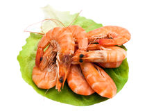 Fresh shrimp on lettuce leaf stock photos