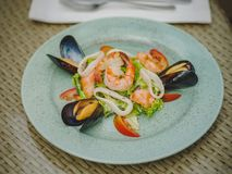 The fresh seafood dish in an expensive restaurant. Modern restaurant. Professional kitchen. Beautiful serving of food. Royalty Free Stock Photos