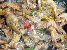 Fresh shrimp at the  restaurant for cook Stock Image