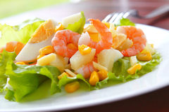 Fresh shrimp salad Stock Image
