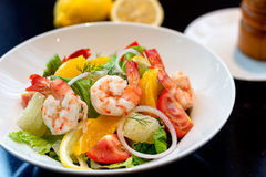 Fresh shrimp salad with grapefruit Royalty Free Stock Images