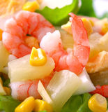 Fresh shrimp salad. Royalty Free Stock Image