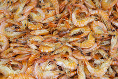Fresh Shrimp for Sale at Brazilian Market Royalty Free Stock Photography