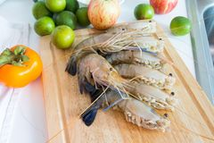 Fresh shrimp shrimp river Royalty Free Stock Images