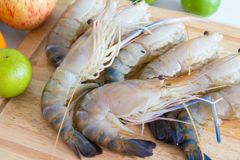 Fresh shrimp shrimp river Stock Image