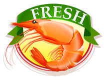 Fresh shrimp with text Royalty Free Stock Photography