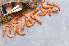 Fresh shrimps, fishing boat with oars and fishnet. Top view, close up on light concrete background.  royalty free stock image