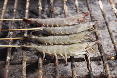 Fresh shrimps grilled on stove Royalty Free Stock Photography