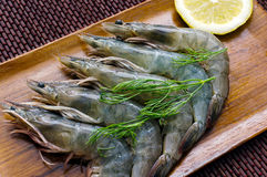 Fresh Shrimps with herbs and lemon Stock Image