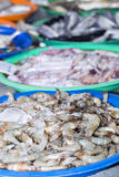 Fresh shrimps on ice exposition at the seafood market In Thailan Royalty Free Stock Photos