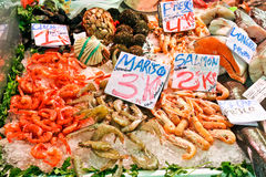 Fresh shrimps on ice at the market. Royalty Free Stock Image