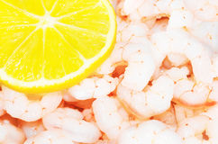 Fresh shrimps with a lemon Royalty Free Stock Photography