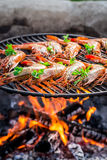 Fresh shrimps with lemon and parsley on hot grill Stock Images