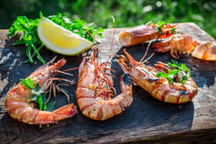 Fresh shrimps with lemon and parsley served in garden Royalty Free Stock Image