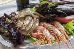Fresh shrimps. On metallic platter Royalty Free Stock Images