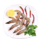 Fresh shrimps on plate with pepper. Royalty Free Stock Images