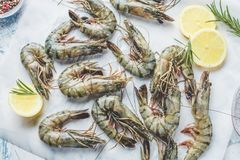 Fresh shrimps or prawns raw on kitchen table board with ingredients stock photo