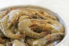 Fresh Shrimps Seasoned with Spices Royalty Free Stock Photo