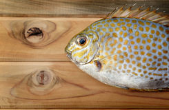 Fresh Siganus guttatus fish from market Stock Image