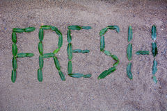 Fresh  sign made with green leafs Stock Images