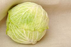 Fresh single cabbage Royalty Free Stock Photography