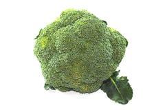 Fresh single green broccoli on white background. Fresh of single green broccoli on white background Royalty Free Stock Photos