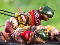 Fresh skewers on the grill. Royalty Free Stock Image