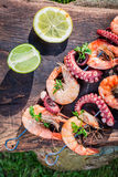 Fresh skewers of seafood with lemon and parsley in garden Royalty Free Stock Images