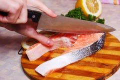 Fresh slice of salmon Stock Photo