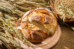 Fresh sliced ​​bread and ears of corn Royalty Free Stock Images