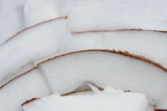 Fresh sliced coconut macro Royalty Free Stock Images