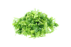 fresh sliced green celery isolated on white Royalty Free Stock Photo