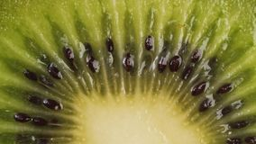Sliced kiwi fruit. Fresh sliced kiwi fruit rotating. Closeup macro shot. Fresh berry series stock video