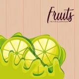 Fresh sliced lemon fruits. Vector illustration design stock illustration