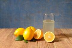 Fresh sliced lemons and leaves Stock Images