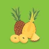 Fresh sliced pineapple illustration. Isolated Royalty Free Stock Images
