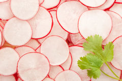 Fresh sliced radish. Background with parsil Stock Image
