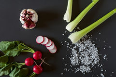 Fresh sliced radish, red garlic, celery and salt Royalty Free Stock Images