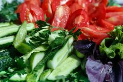 Fresh sliced vegetables. Sliced tomatoes and cucumbers with bazil and lettuce lie on a plate Royalty Free Stock Photo