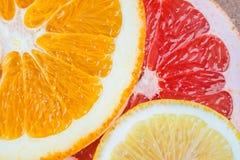 Fresh slices of citrus fruits. Fresh citrus fruit slices on cork board Royalty Free Stock Image