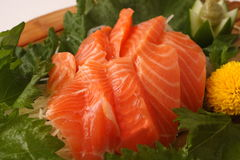 Fresh Slices of Raw Salmon Sashimi, Japanese Food. Japanese food Sashimi; fresh slices of raw fish Royalty Free Stock Image