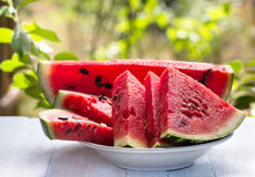 Fresh slices of ripe watermelon Royalty Free Stock Images